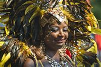 La carnavalul de la Rio