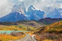 National Park Torres del Paine - Patagonia