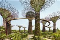 Parcul Gardens by the Bay
