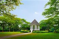 Singapore - Gradina Botanica
