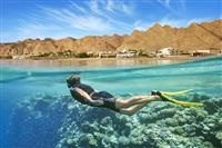 Snorkeling in Marea Rosie