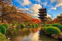 Templul Toji - Kyoto