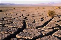 Desertul Atacama